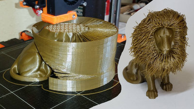 3D Printed Hair - Hairy Lion.jpg